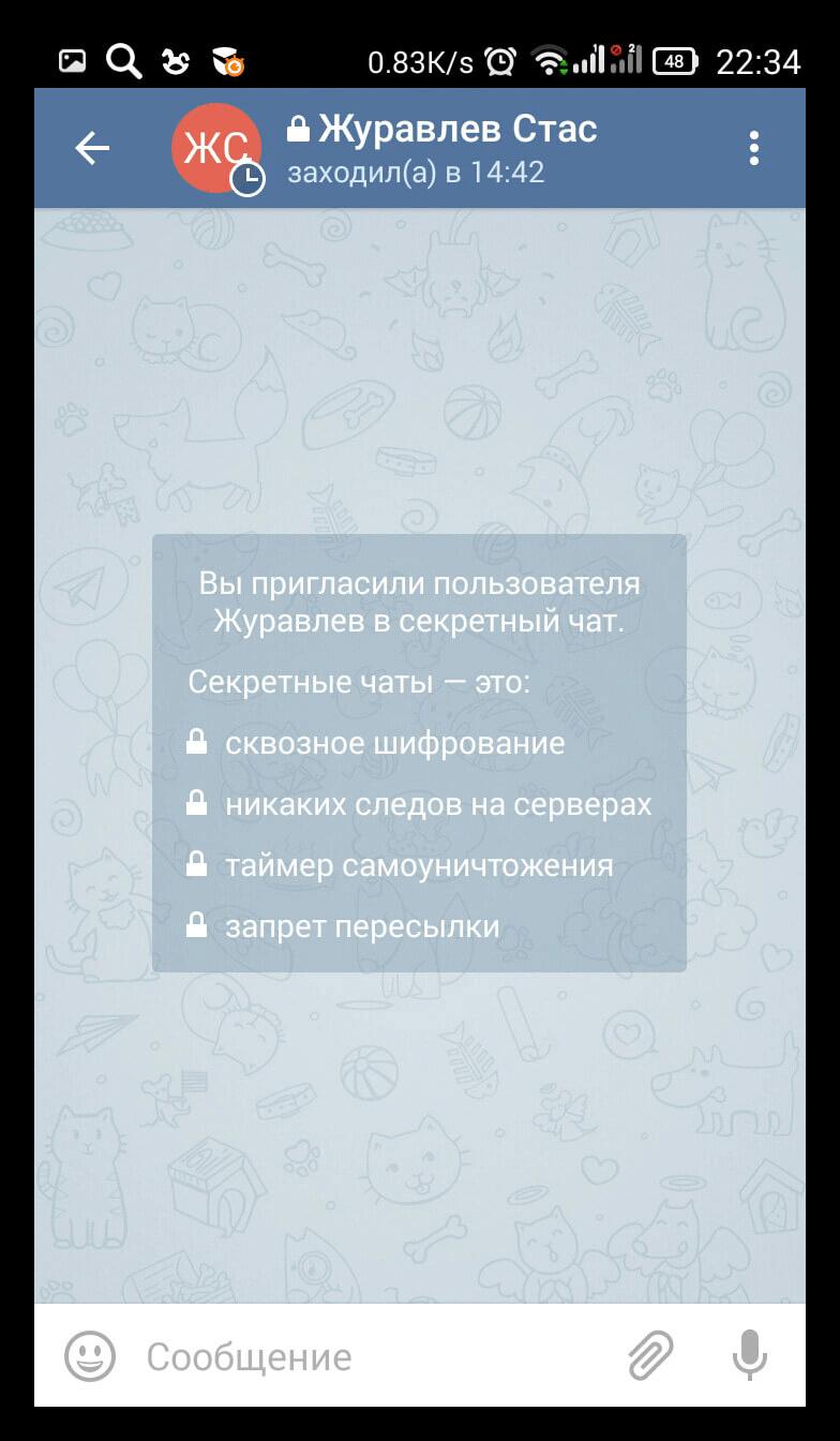 Вид секретного чата Telegram